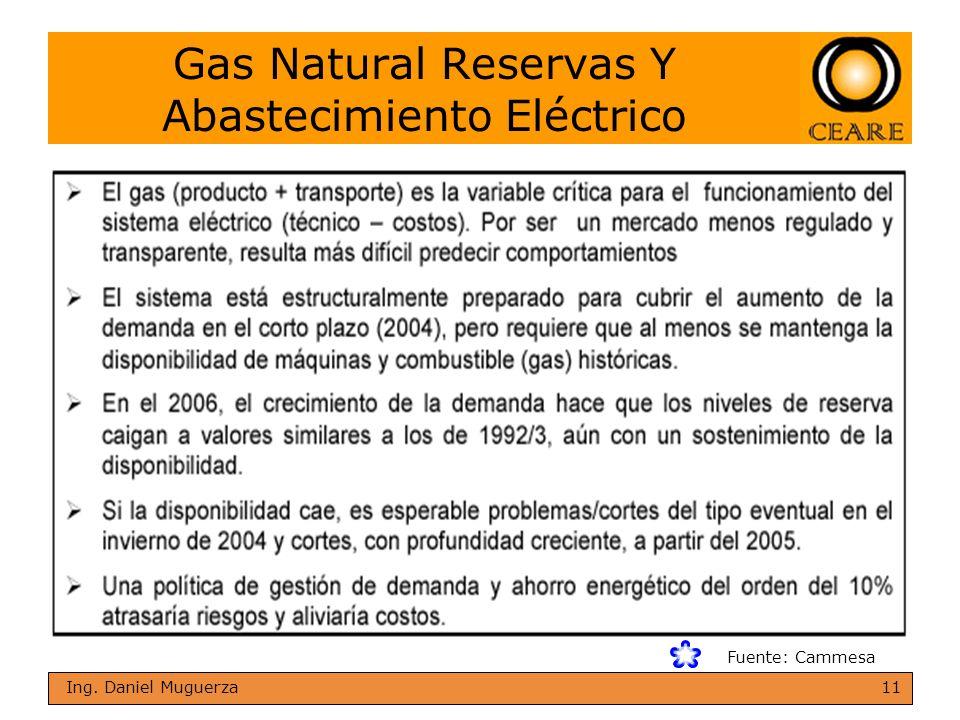 11 Ing. Daniel Muguerza Gas Natural Reservas Y Abastecimiento Eléctrico Fuente: Cammesa