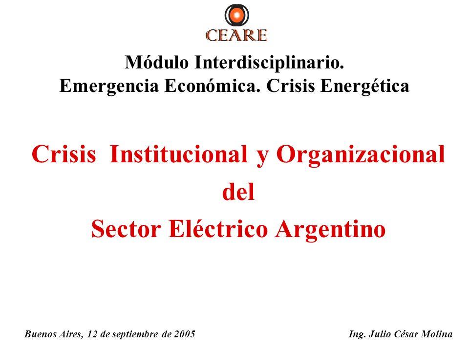 Crisis Institucional y Organizacional del Sector Eléctrico Argentino Ing. Julio César MolinaBuenos Aires, 12 de septiembre de 2005 Módulo Interdiscipl