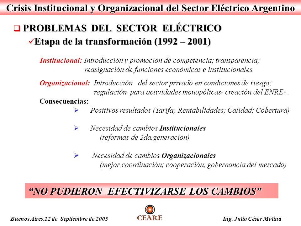 Crisis Institucional y Organizacional del Sector Eléctrico Argentino PROBLEMAS DEL SECTOR ELÉCTRICO PROBLEMAS DEL SECTOR ELÉCTRICO Etapa de la transfo