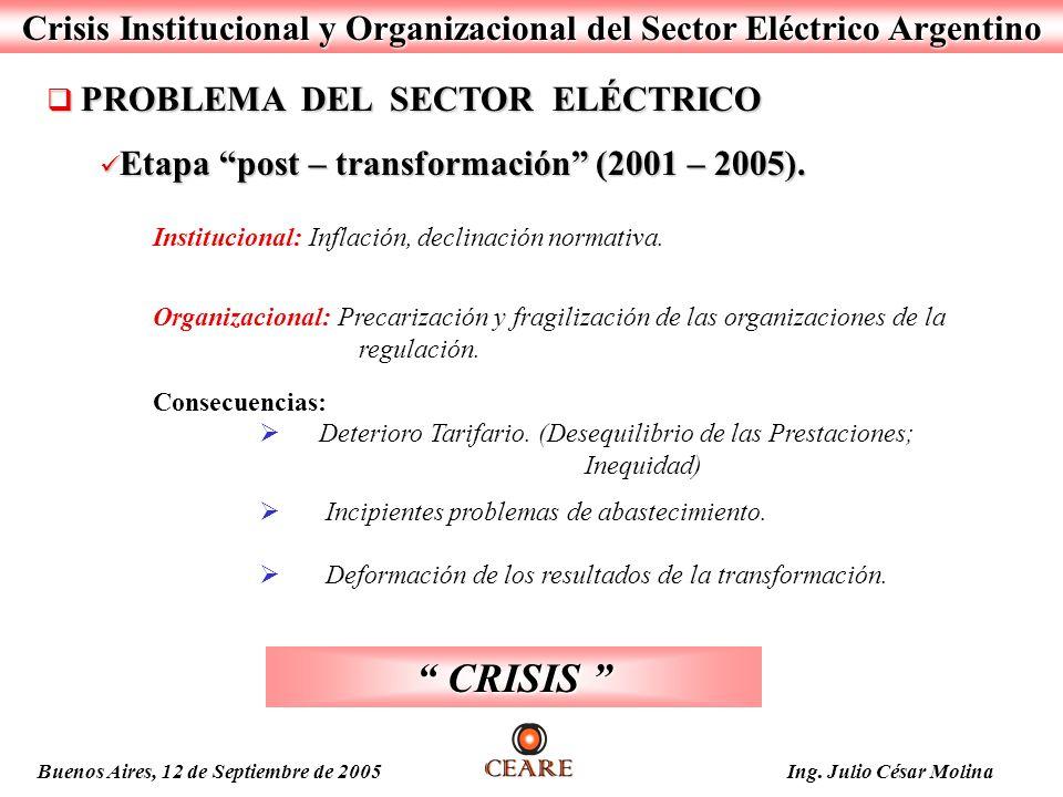 Crisis Institucional y Organizacional del Sector Eléctrico Argentino PROBLEMA DEL SECTOR ELÉCTRICO PROBLEMA DEL SECTOR ELÉCTRICO Etapa post – transfor