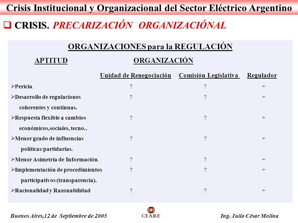 Crisis Institucional y Organizacional del Sector Eléctrico Argentino CRISIS. CRISIS. PRECARIZACIÓN ORGANIZACIÓNAL ORGANIZACIONES para la REGULACIÓN AP