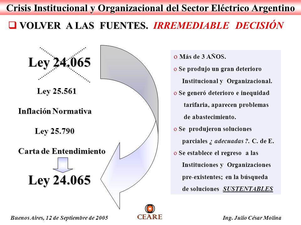 Crisis Institucional y Organizacional del Sector Eléctrico Argentino Ley 24.065 Ley 24.065 Ley 25.561 Ley 25.561 Inflación Normativa Ley 25.790 Ley 25