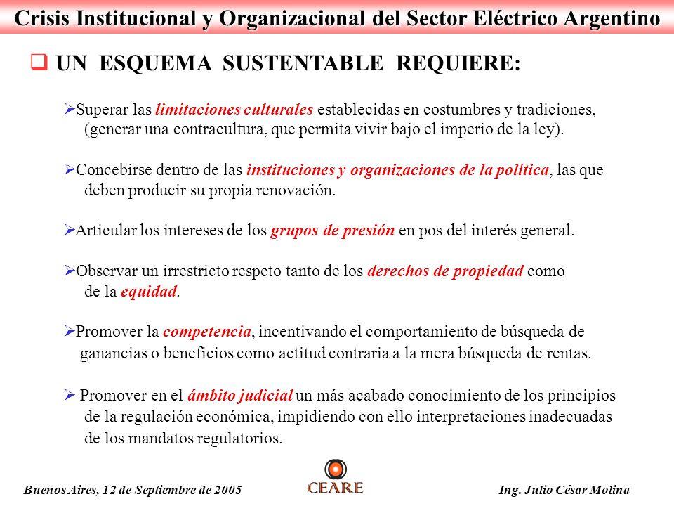 Crisis Institucional y Organizacional del Sector Eléctrico Argentino Buenos Aires, 12 de Septiembre de 2005 Ing. Julio César Molina UN ESQUEMA SUSTENT