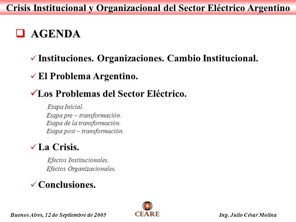 Crisis Institucional y Organizacional del Sector Eléctrico Argentino AGENDA AGENDA Instituciones. Organizaciones. Cambio Institucional. El Problema Ar