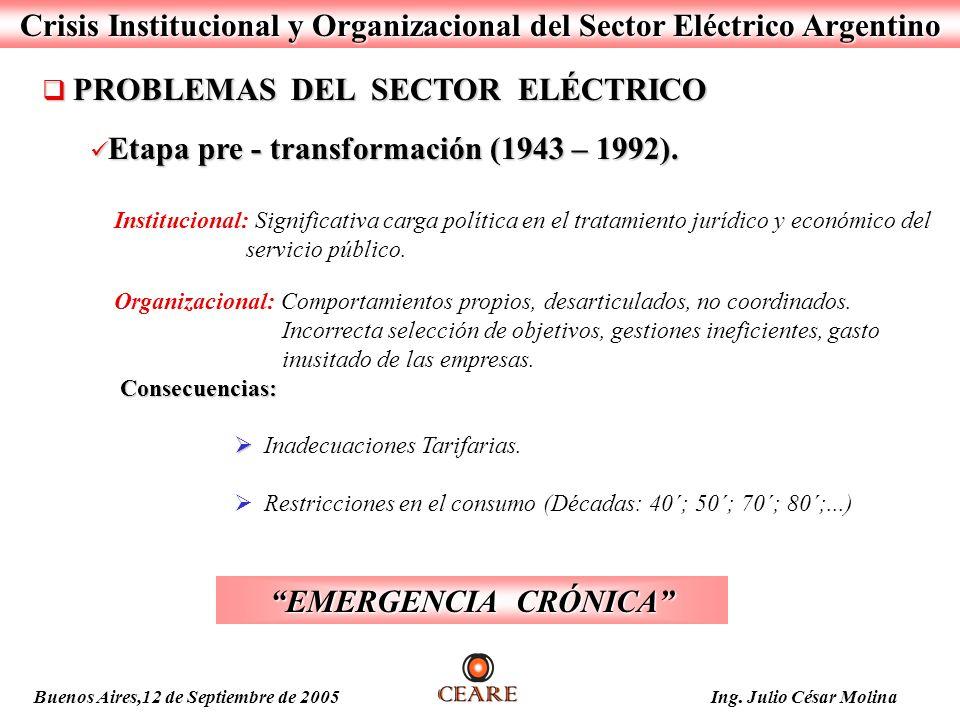 Crisis Institucional y Organizacional del Sector Eléctrico Argentino PROBLEMAS DEL SECTOR ELÉCTRICO PROBLEMAS DEL SECTOR ELÉCTRICO Etapa pre - transfo