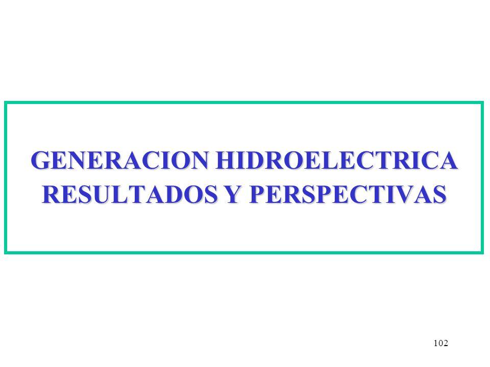 102 GENERACION HIDROELECTRICA RESULTADOS Y PERSPECTIVAS