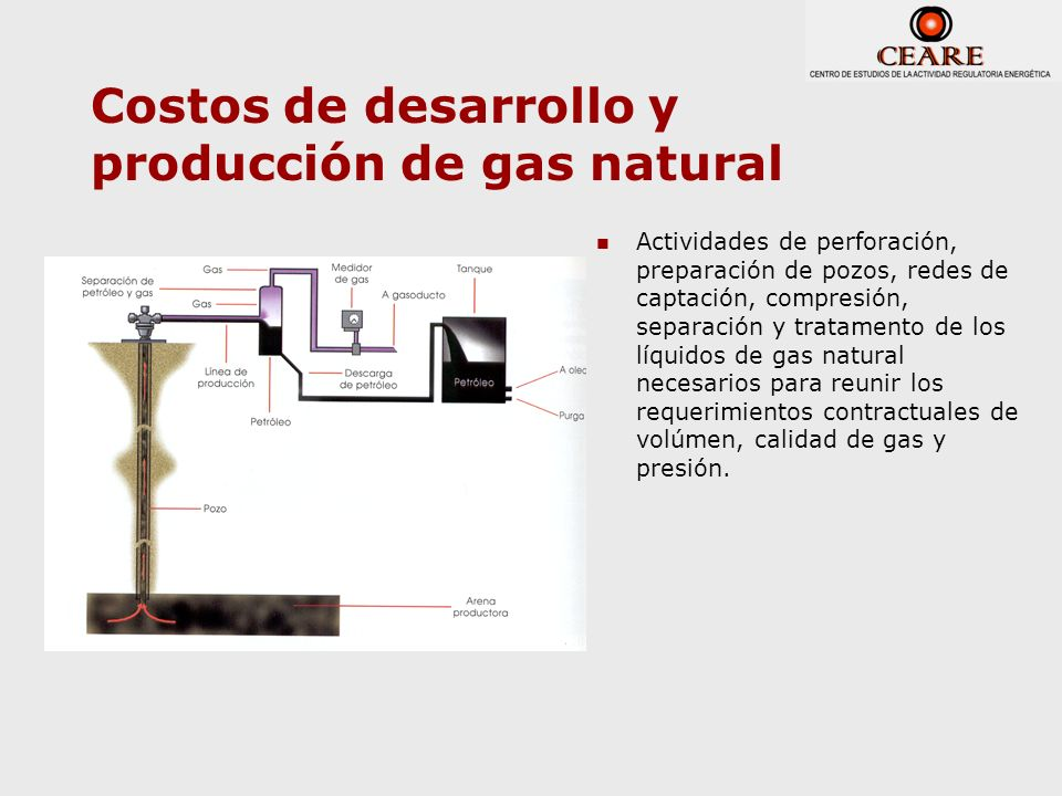 Costos de desarrollo y producción de gas natural Actividades de perforación, preparación de pozos, redes de captación, compresión, separación y tratam