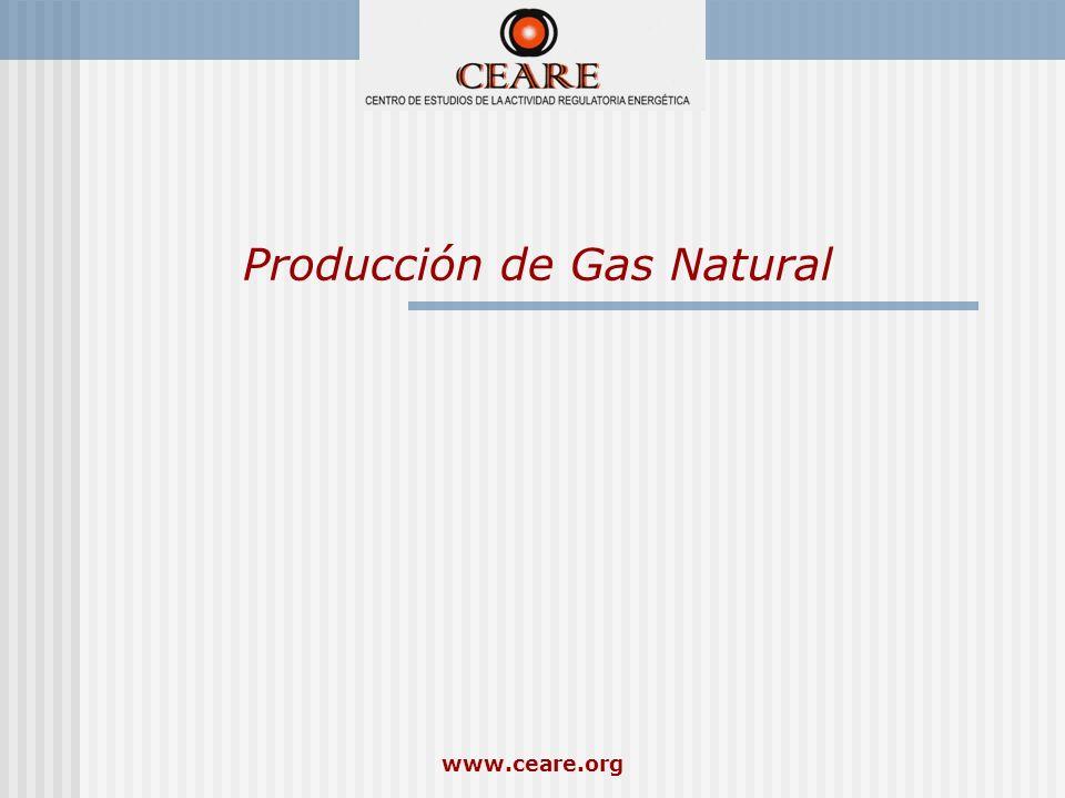 www.ceare.org Producción de Gas Natural