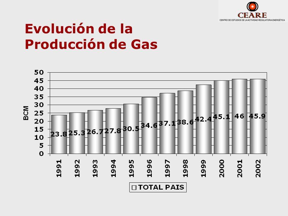 Evolución de la Producción de Gas
