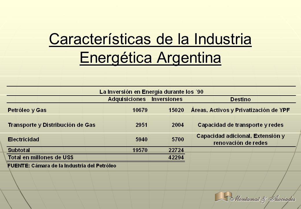 Características de la Industria Energética Argentina