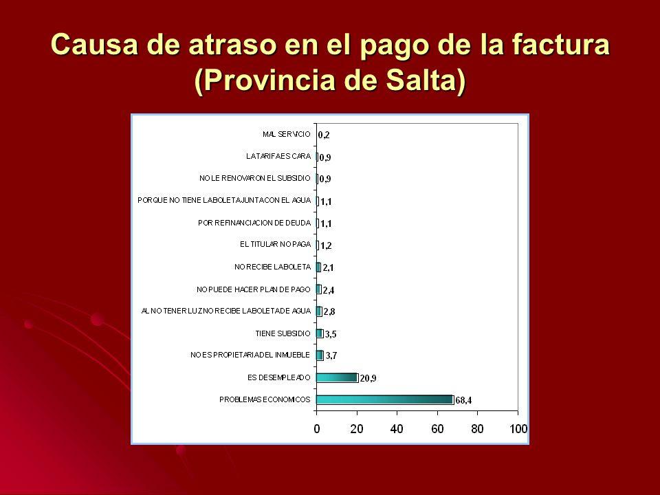 Causa de atraso en el pago de la factura (Provincia de Salta)