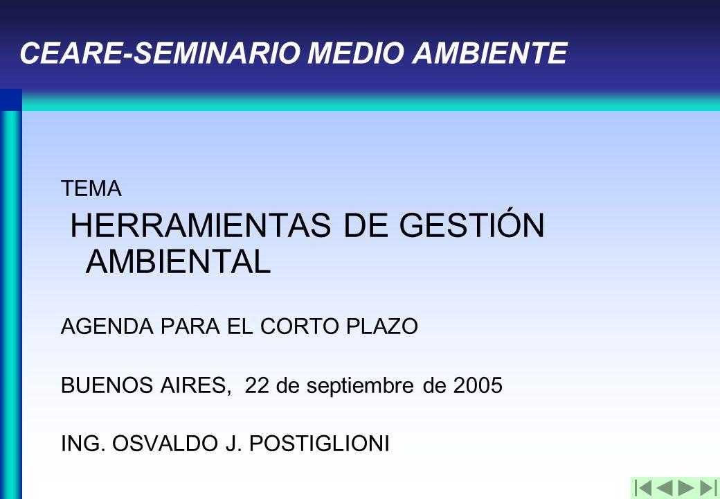 CEARE-SEMINARIO MEDIO AMBIENTE TEMA HERRAMIENTAS DE GESTIÓN AMBIENTAL AGENDA PARA EL CORTO PLAZO BUENOS AIRES, 22 de septiembre de 2005 ING.