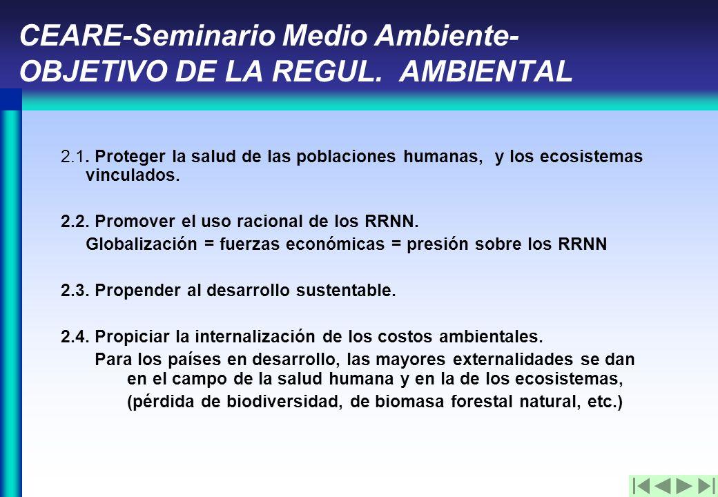 CEARE-Seminario Medio Ambiente- OBJETIVO DE LA REGUL.