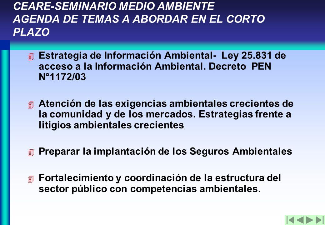 CEARE-SEMINARIO MEDIO AMBIENTE AGENDA DE TEMAS A ABORDAR EN EL CORTO PLAZO 4 Estrategia de Información Ambiental- Ley 25.831 de acceso a la Información Ambiental.