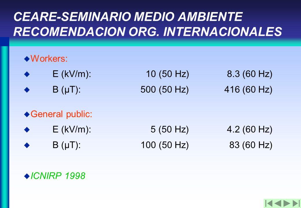 CEARE-SEMINARIO MEDIO AMBIENTE RECOMENDACION ORG.