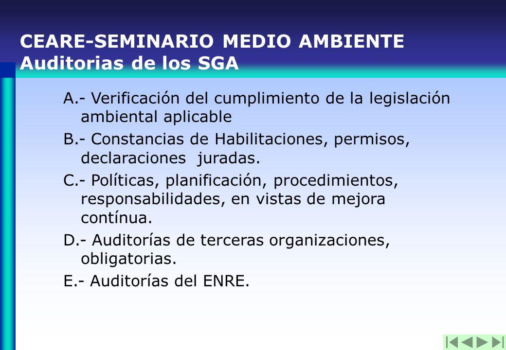 CEARE- SEMINARIO MEDIO AMBIENTE Energéticos primarios– Año 2003