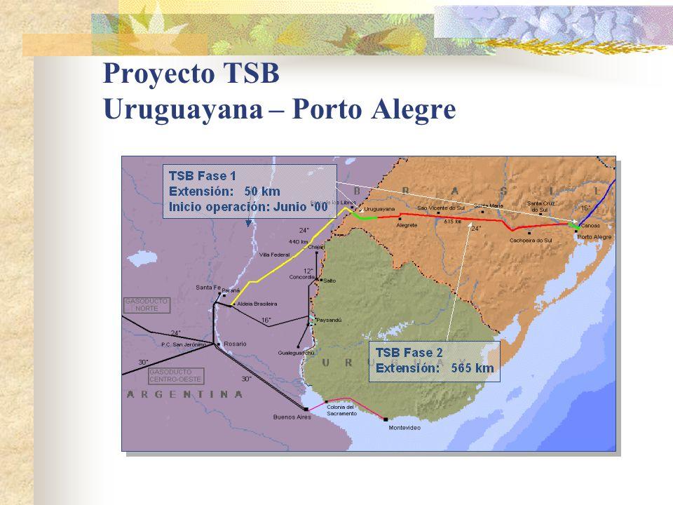 Proyecto TSB Uruguayana – Porto Alegre