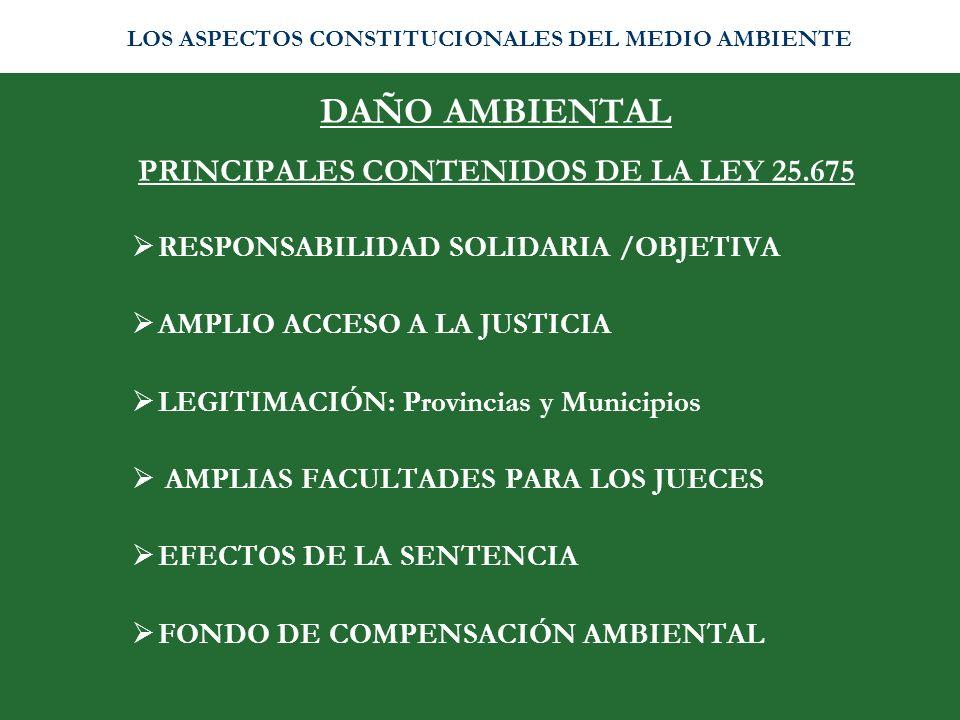 DAÑO AMBIENTAL PRINCIPALES CONTENIDOS DE LA LEY 25.675 RESPONSABILIDAD SOLIDARIA /OBJETIVA AMPLIO ACCESO A LA JUSTICIA LEGITIMACIÓN: Provincias y Muni