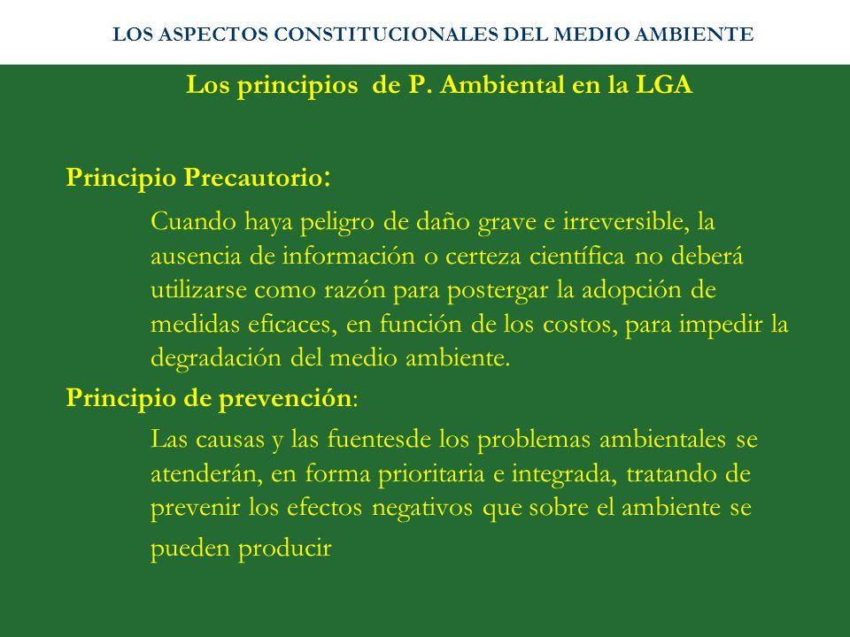 Los principios de P. Ambiental en la LGA Principio Precautorio : Cuando haya peligro de daño grave e irreversible, la ausencia de información o certez