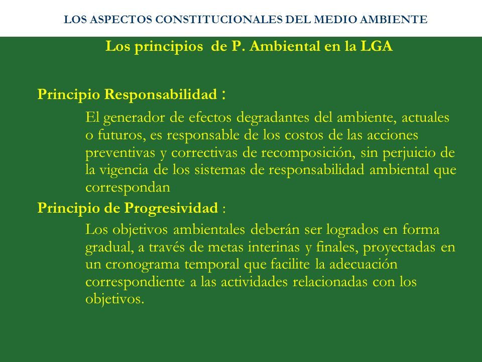 Los principios de P. Ambiental en la LGA Principio Responsabilidad : El generador de efectos degradantes del ambiente, actuales o futuros, es responsa