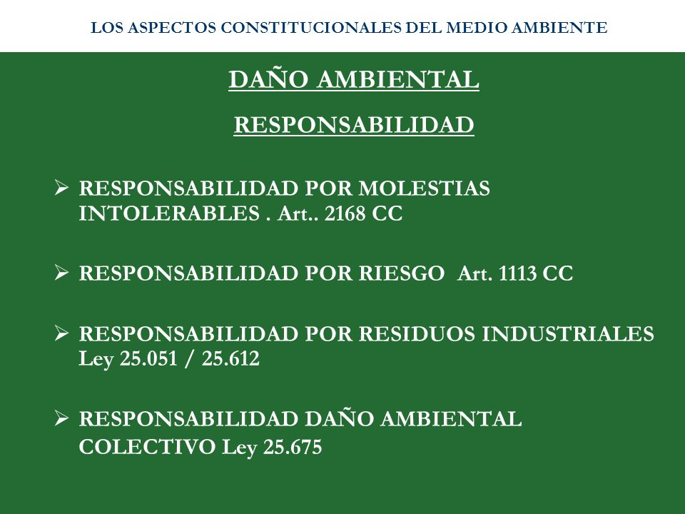 DAÑO AMBIENTAL RESPONSABILIDAD RESPONSABILIDAD POR MOLESTIAS INTOLERABLES. Art.. 2168 CC RESPONSABILIDAD POR RIESGO Art. 1113 CC RESPONSABILIDAD POR R