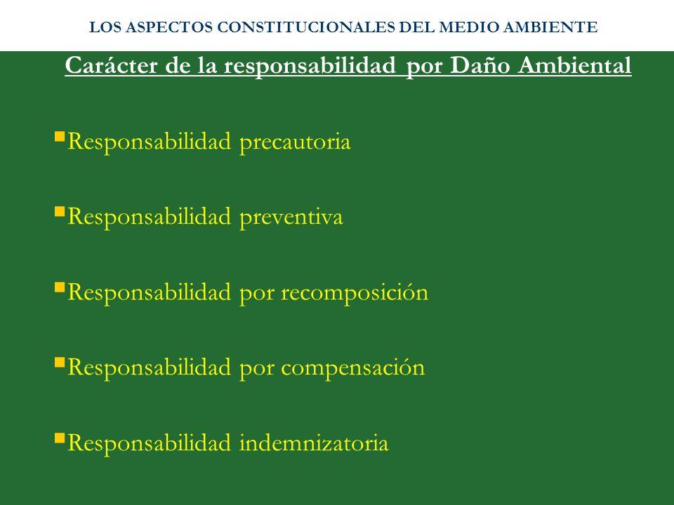 Carácter de la responsabilidad por Daño Ambiental Responsabilidad precautoria Responsabilidad preventiva Responsabilidad por recomposición Responsabil