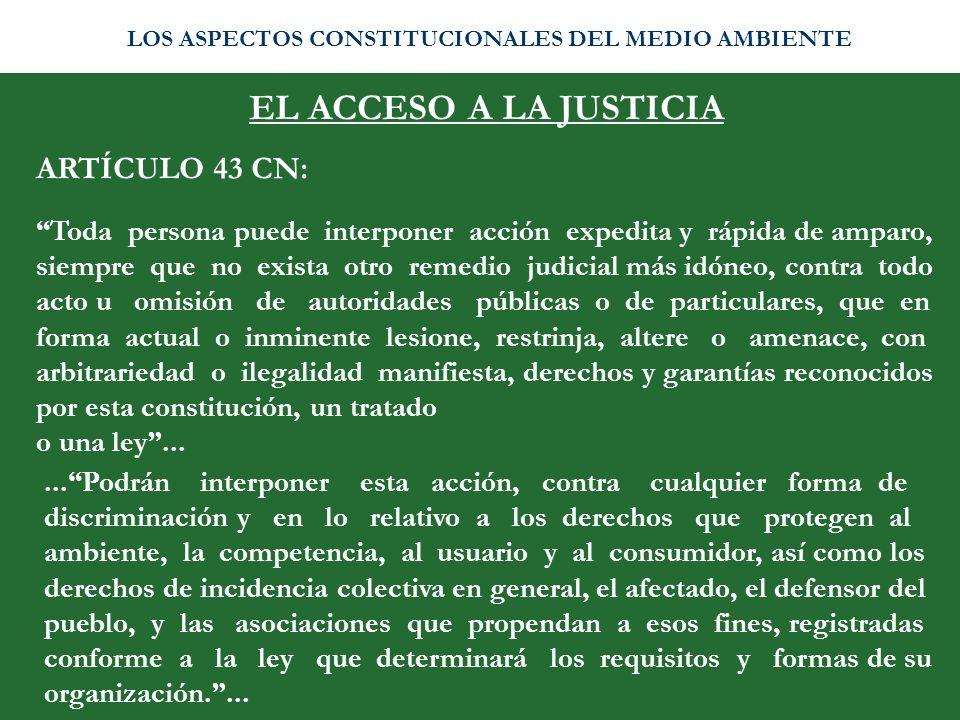 EL ACCESO A LA JUSTICIA ARTÍCULO 43 CN: Toda persona puede interponer acción expedita y rápida de amparo, siempre que no exista otro remedio judicial