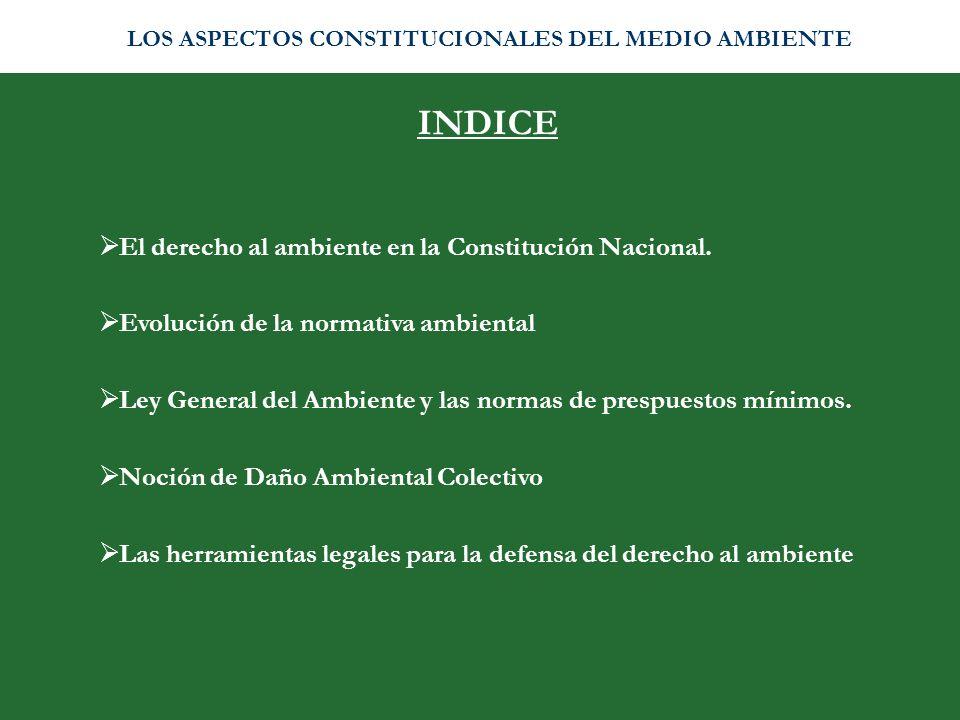 INDICE El derecho al ambiente en la Constitución Nacional. Evolución de la normativa ambiental Ley General del Ambiente y las normas de prespuestos mí