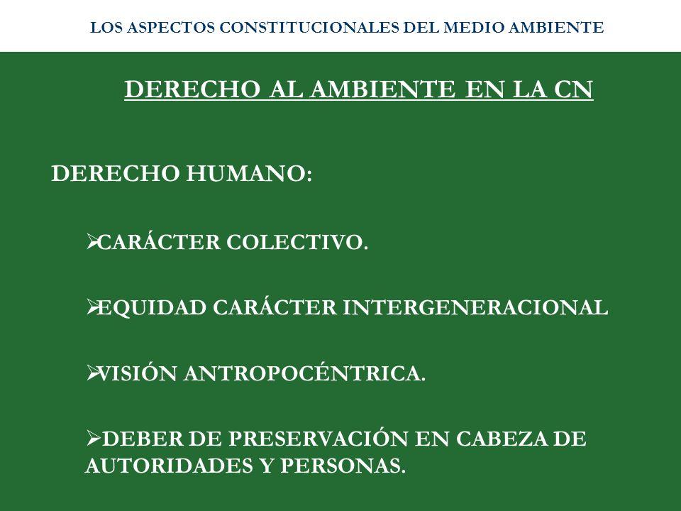 DERECHO AL AMBIENTE EN LA CN DERECHO HUMANO: CARÁCTER COLECTIVO. EQUIDAD CARÁCTER INTERGENERACIONAL VISIÓN ANTROPOCÉNTRICA. DEBER DE PRESERVACIÓN EN C