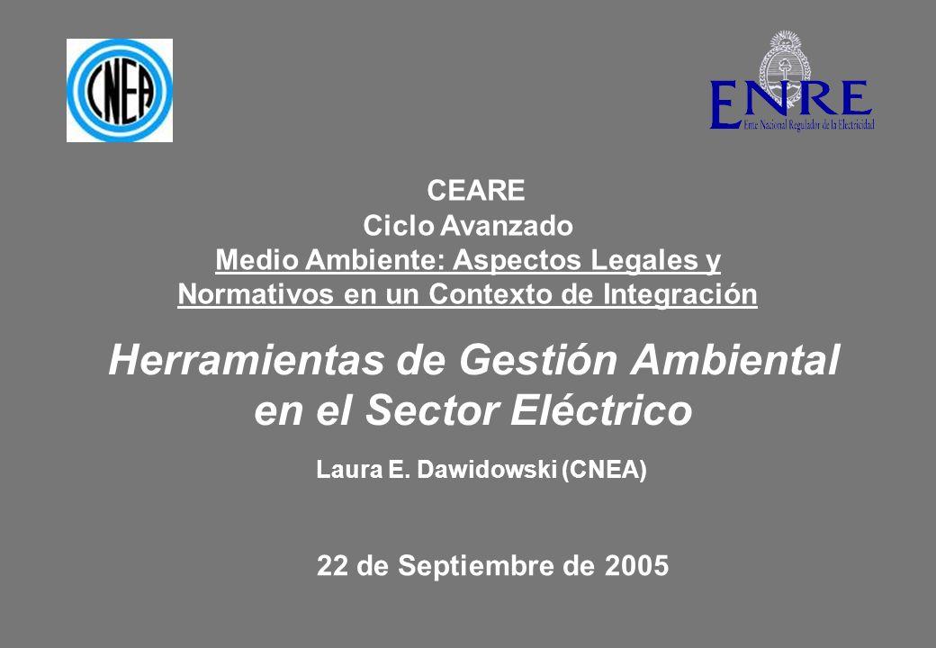 Regulación Ambiental en el Sector Eléctrico SECRETARÍA DE ENERGÍA ARN Generación Centrales térmicas Centrales hidroeléctricas Autogeneración Co-generación Transmisión Distribución ENRE Instalaciones Nucleares