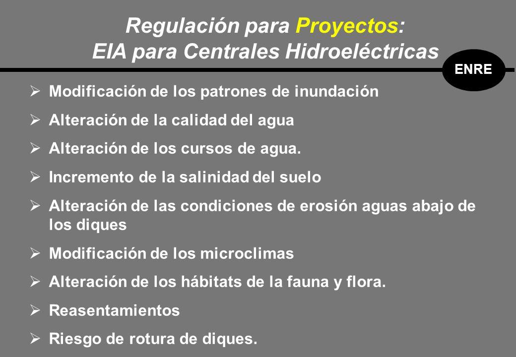 Modificación de los patrones de inundación Alteración de la calidad del agua Alteración de los cursos de agua.