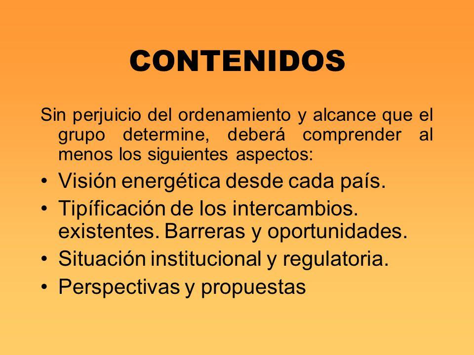 CONTENIDOS Sin perjuicio del ordenamiento y alcance que el grupo determine, deberá comprender al menos los siguientes aspectos: Visión energética desd