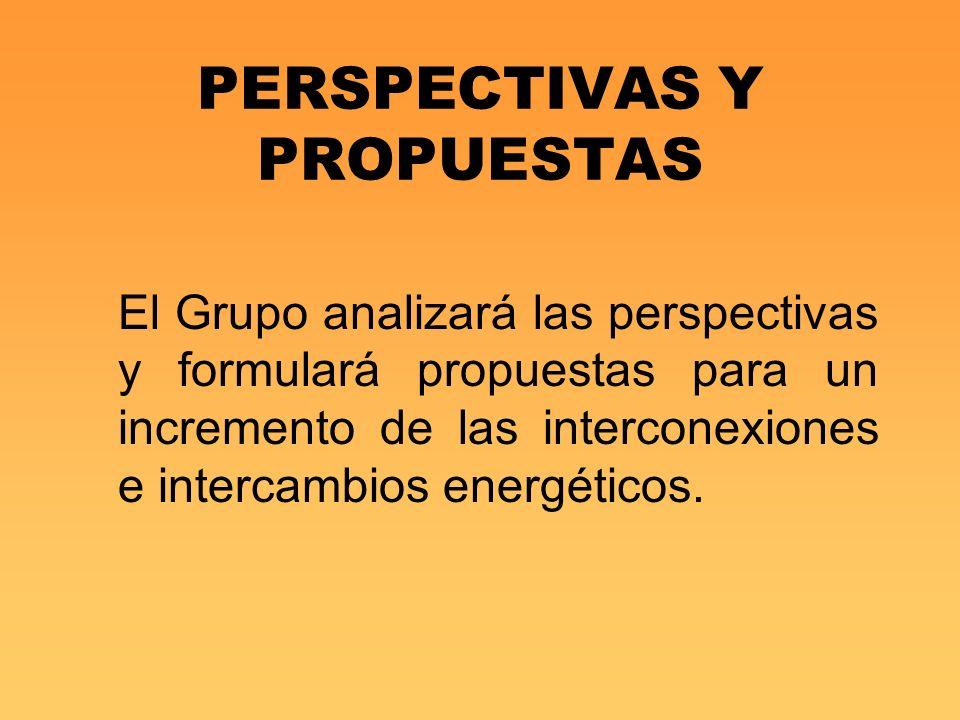 PERSPECTIVAS Y PROPUESTAS El Grupo analizará las perspectivas y formulará propuestas para un incremento de las interconexiones e intercambios energéti