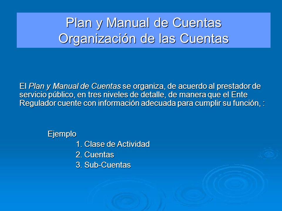 El Plan y Manual de Cuentas se organiza, de acuerdo al prestador de servicio público, en tres niveles de detalle, de manera que el Ente Regulador cuen