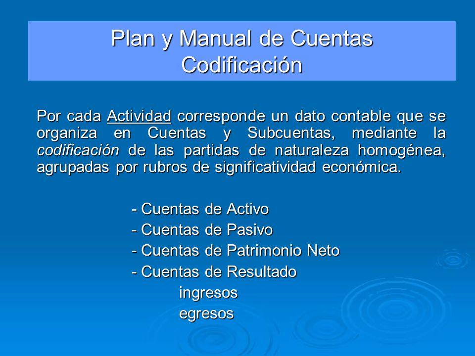 Por cada Actividad corresponde un dato contable que se organiza en Cuentas y Subcuentas, mediante la codificación de las partidas de naturaleza homogé
