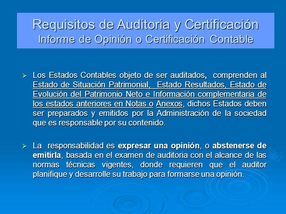 Los Estados Contables objeto de ser auditados, comprenden al Estado de Situación Patrimonial, Estado Resultados, Estado de Evolución del Patrimonio Ne