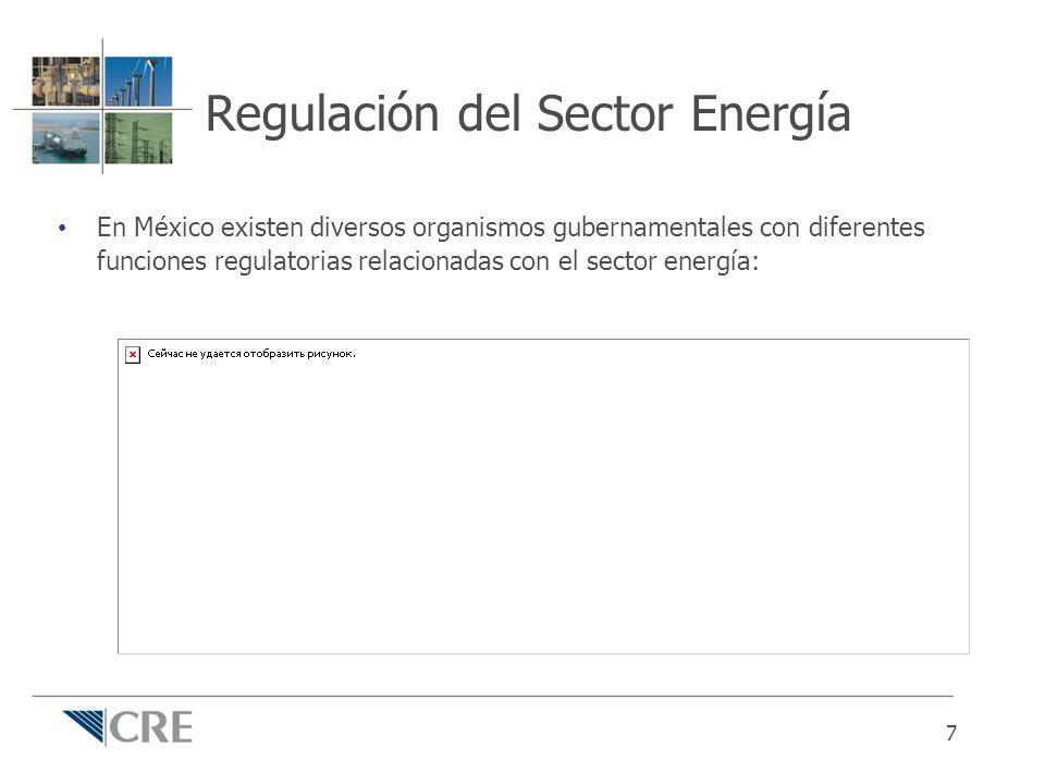Regulación del Sector Energía En México existen diversos organismos gubernamentales con diferentes funciones regulatorias relacionadas con el sector e