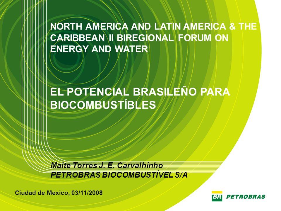 1 Maite Torres J. E. Carvalhinho PETROBRAS BIOCOMBUSTÍVEL S/A Ciudad de Mexico, 03/11/2008 NORTH AMERICA AND LATIN AMERICA & THE CARIBBEAN II BIREGION