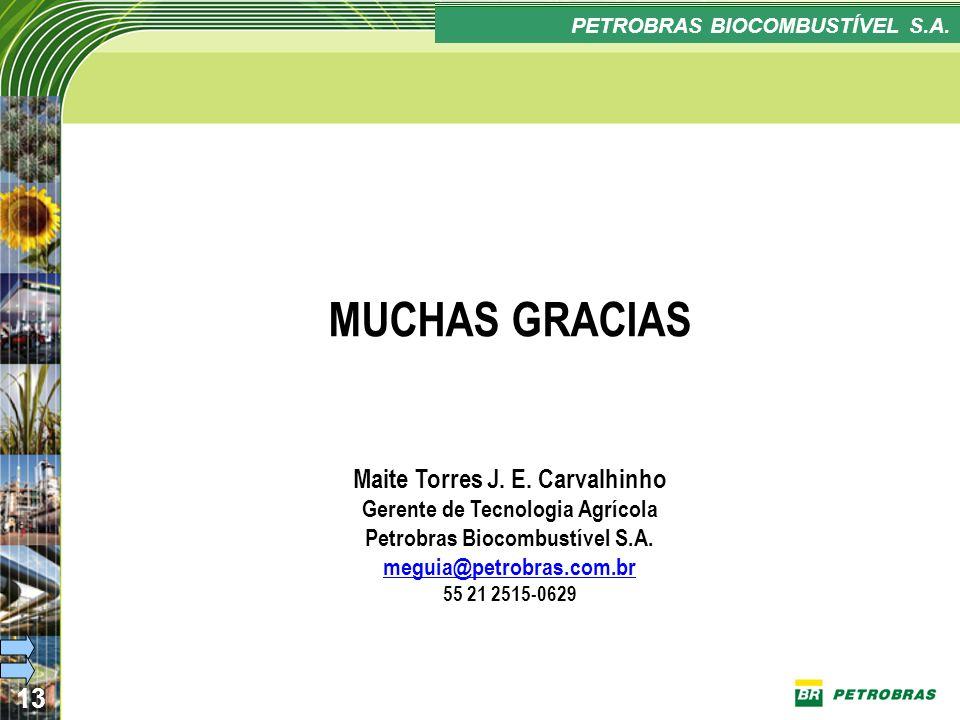 Confidencial 13 PLANO ESTRATÉGICO PETROBRAS BIOCOMBUSTÍVEL MUCHAS GRACIAS Maite Torres J. E. Carvalhinho Gerente de Tecnologia Agrícola Petrobras Bioc