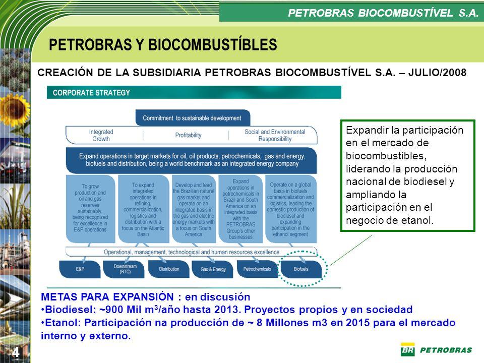 Confidencial 4 PLANO ESTRATÉGICO PETROBRAS BIOCOMBUSTÍVEL Expandir la participación en el mercado de biocombustibles, liderando la producción nacional
