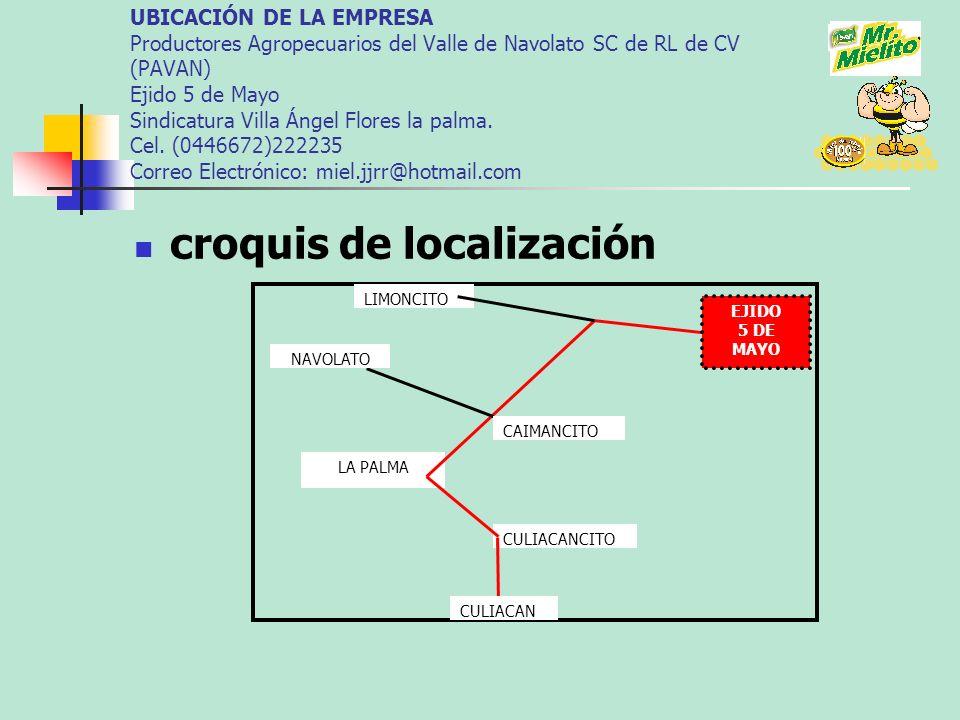 PROYECCIÓN DE VENTAS 2007 2OO7/2008 NUM.PRODUCT OS VENDIDOS INGRESOS 2OO8/2009 NUM.