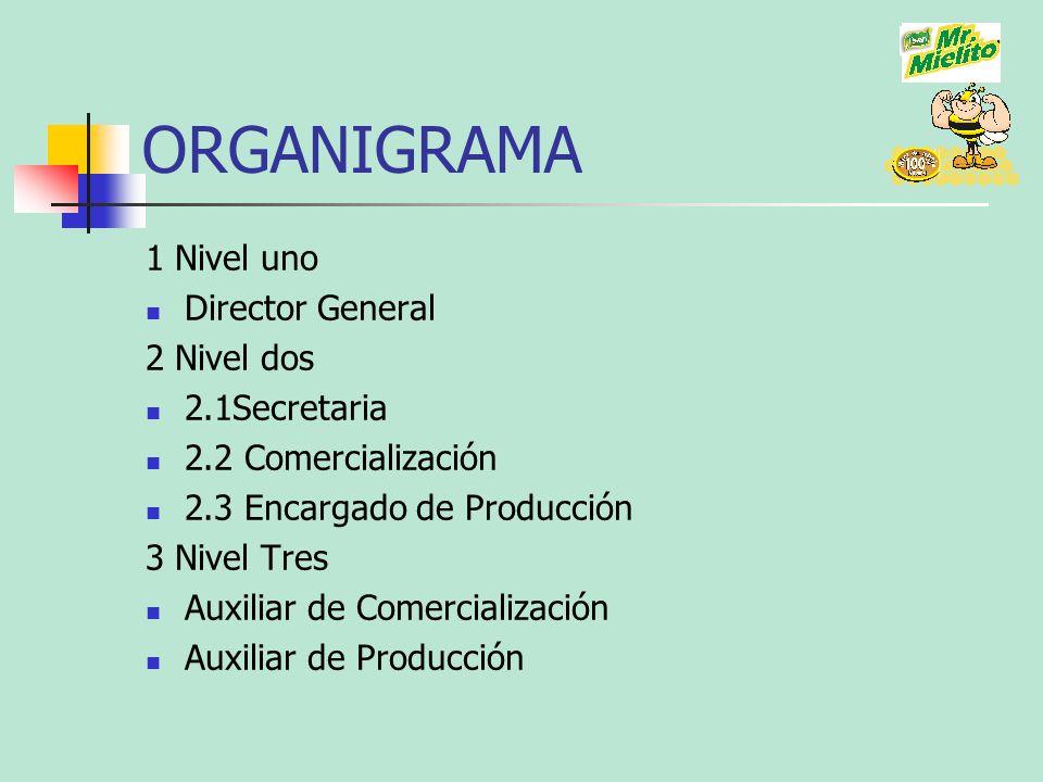ORGANIGRAMA 1 Nivel uno Director General 2 Nivel dos 2.1Secretaria 2.2 Comercialización 2.3 Encargado de Producción 3 Nivel Tres Auxiliar de Comercial
