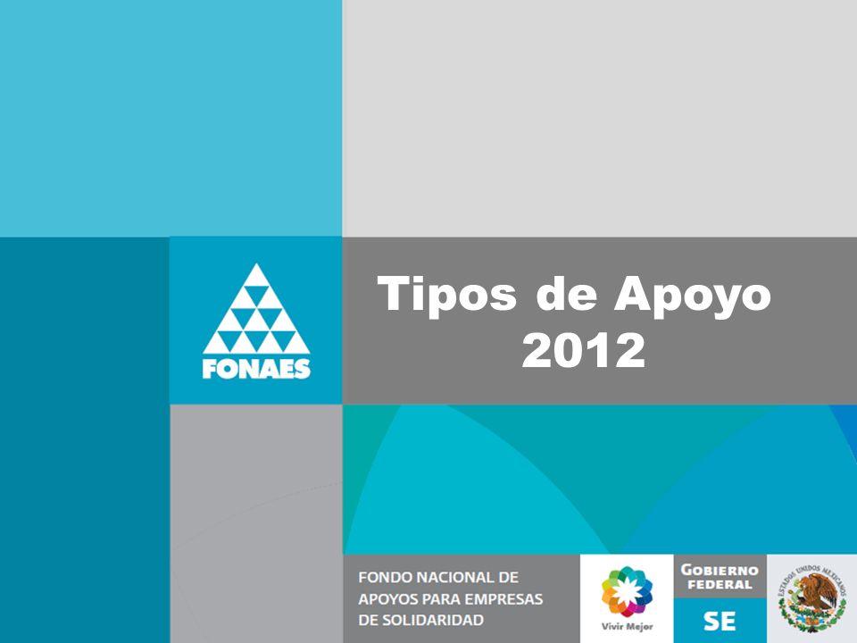 Tipos de Apoyo 2012
