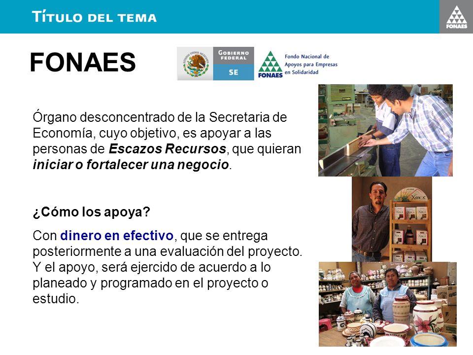 FONAES Órgano desconcentrado de la Secretaria de Economía, cuyo objetivo, es apoyar a las personas de Escazos Recursos, que quieran iniciar o fortalec