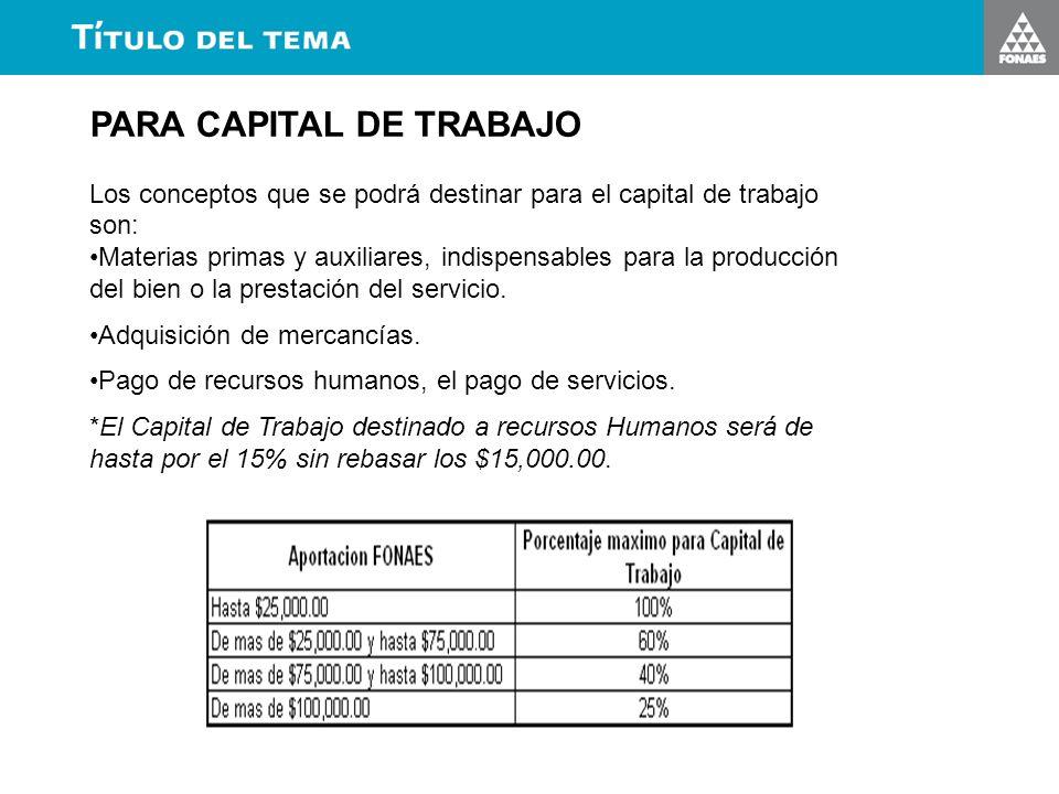 PARA CAPITAL DE TRABAJO Los conceptos que se podrá destinar para el capital de trabajo son: Materias primas y auxiliares, indispensables para la produ