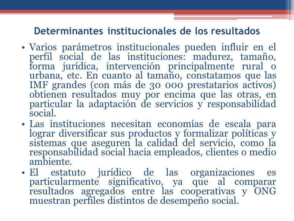 Determinantes institucionales de los resultados Varios parámetros institucionales pueden influir en el perfil social de las instituciones: madurez, tamaño, forma jurídica, intervención principalmente rural o urbana, etc.