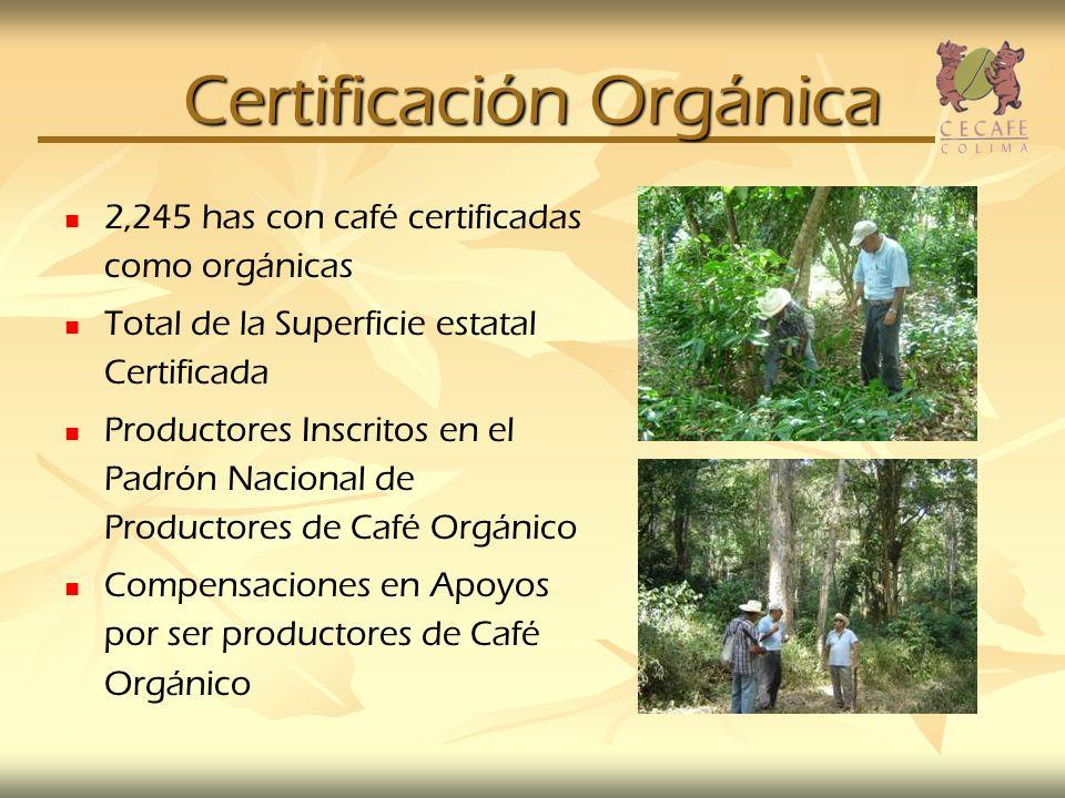 Certificación Orgánica 2,245 has con café certificadas como orgánicas Total de la Superficie estatal Certificada Productores Inscritos en el Padrón Na
