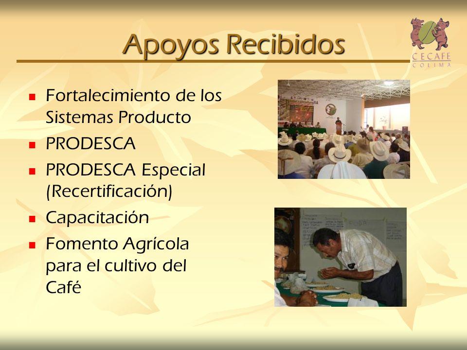 Apoyos Recibidos Fortalecimiento de los Sistemas Producto PRODESCA PRODESCA Especial (Recertificación) Capacitación Fomento Agrícola para el cultivo d