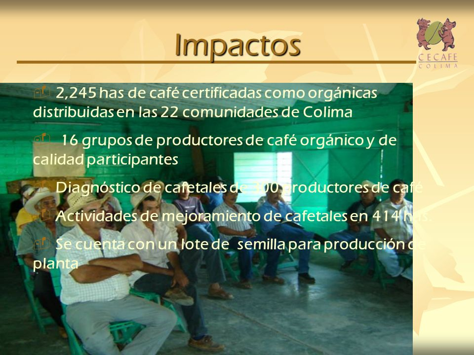 Impactos 2,245 has de café certificadas como orgánicas distribuidas en las 22 comunidades de Colima 16 grupos de productores de café orgánico y de cal