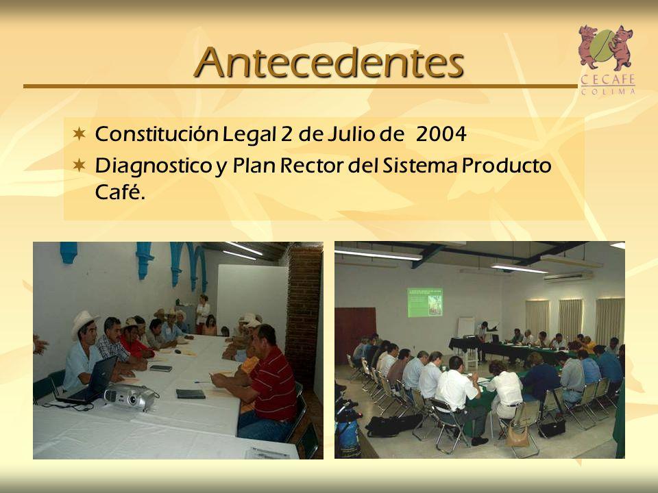 Antecedentes Constitución Legal 2 de Julio de 2004 Diagnostico y Plan Rector del Sistema Producto Café.